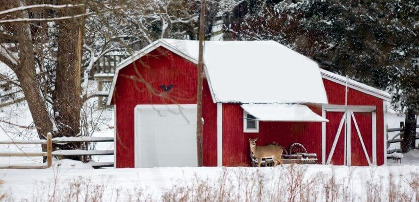 Tips on How Winterise Your Shed