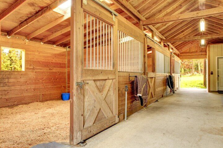 Stable Design and Ventilation Are Crucial For Your Horses